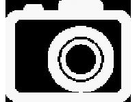 Кузов (ФУРГОН остекленный) щиток приборов Евро-4, инжектор защитный